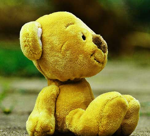 Beautiful Teddy Bear Images Pics HD Pictures for Facebook