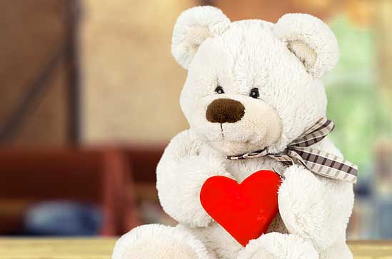 Best Free New Teddy Bear Photo Pics Wallpaper DOWNLOAD