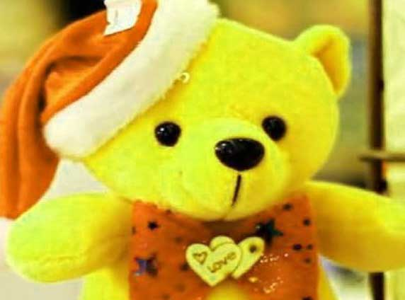Teddy Bear Photo Pictures Download Latest