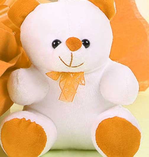 Teddy Bear Images Pics HD Photo for Facebook