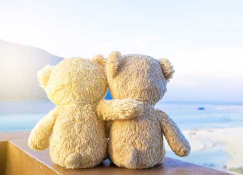 Teddy Bear Photo Wallpaper for facebook