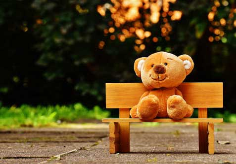 Best Full HD Teddy Bear Photo Pics Wallpaper Download