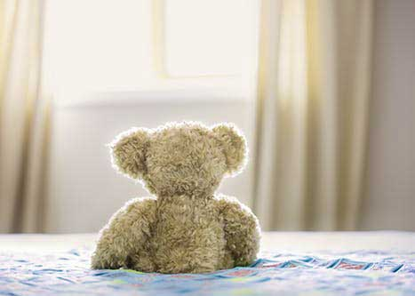 Teddy Bear Photo Wallpaper Full HD