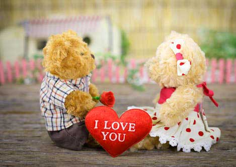 Teddy Bear Photo Pics Free Download