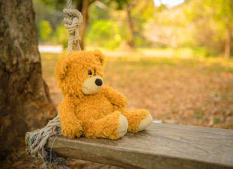 Teddy Bear Photo Wallpaper pic Download Latest