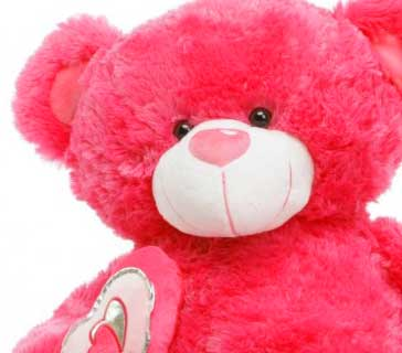Latest New Full HD Teddy Bear Photo Pictures Download
