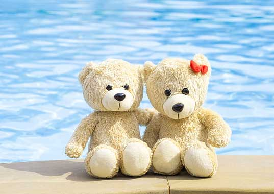 Teddy Bear Photo Wallpaper pic Download Free