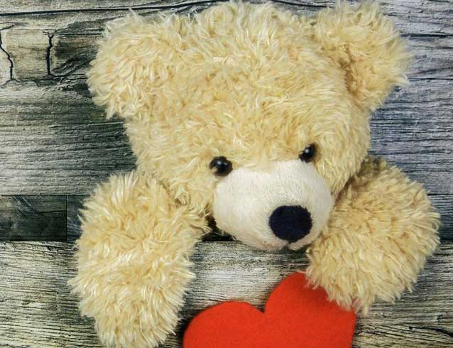 Teddy Bear Photo Wallpaper Latest Download