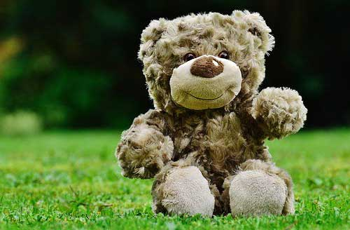 Teddy Bear Photo Pics Download