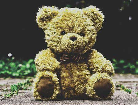 Teddy Bear Photo Wallpaper free Download