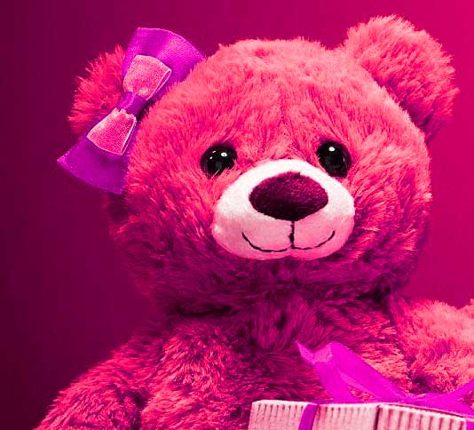 Top Full HD Teddy Bear Photo Pic Download