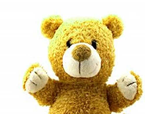 Teddy Bear Photo Wallpaper Download
