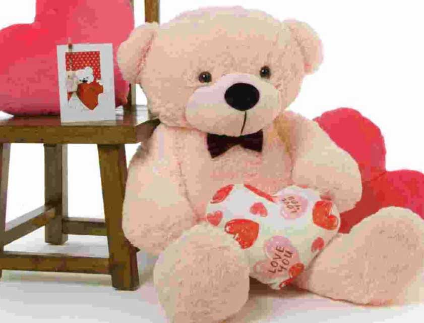 Teddy Bear Photo Images pic With girlfriend