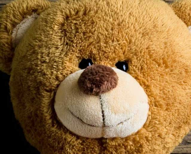 Teddy Bear Photo photo pics Download