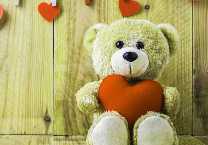 Teddy Bear Photo Pics Wallpaper Free Download