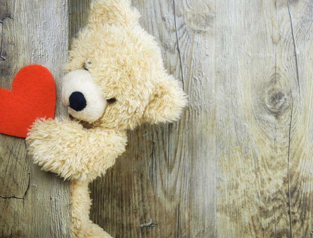 Beautiful Teddy Bear Images Pics HD Wallpaper Free Download