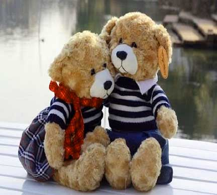 Teddy Bear Photo Wallpaper pics Download Free