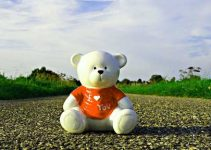 Teddy Bear 99