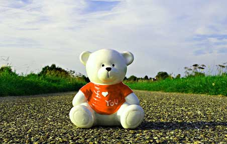 Teddy Bear Photo Wallpaper pics Download
