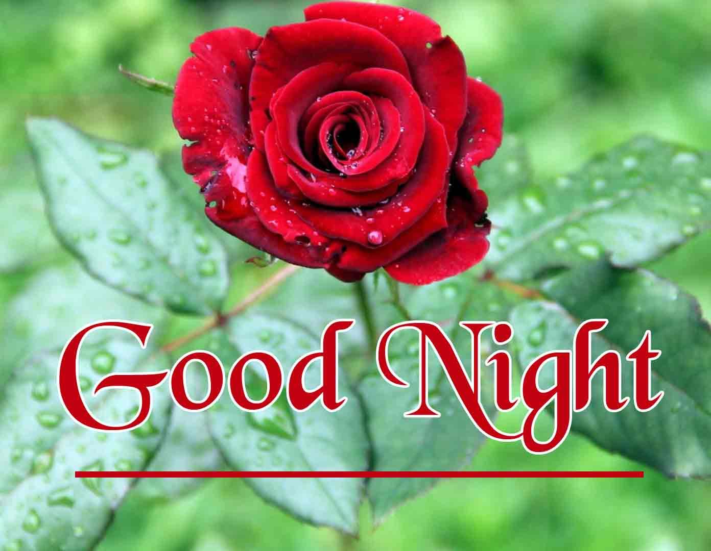 good night wallpaper 103