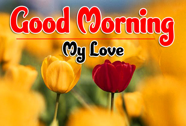 Beautiful Good Morning Images For Girlfriend 13