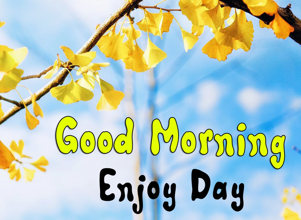Beautiful Good Morning Pics Download 15