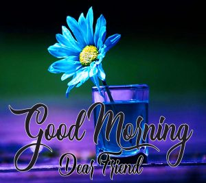 Best good morning have a nice day Images For Friend