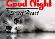 Cute Good Night Images 5