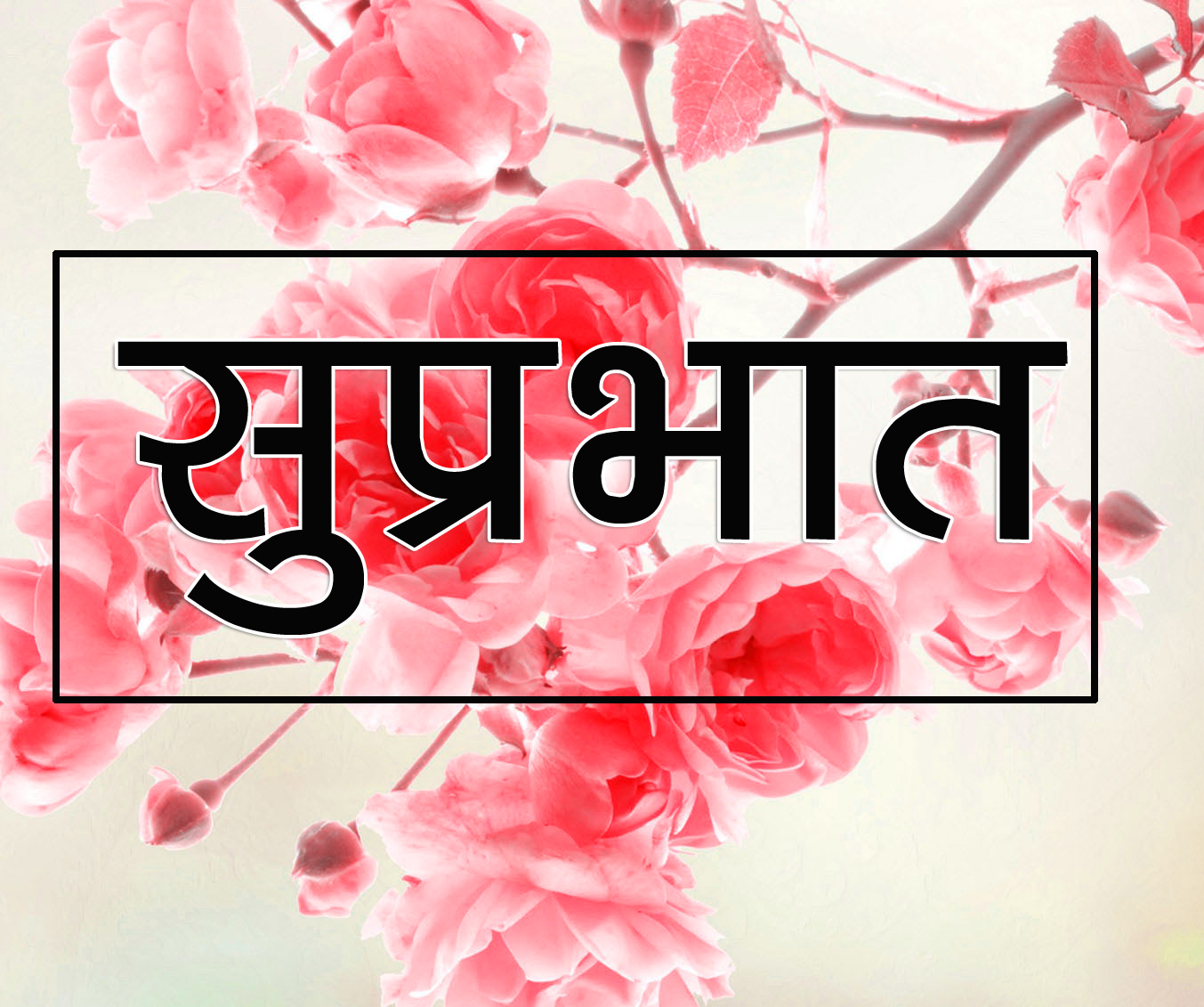 Flower Suprabhat Images 1