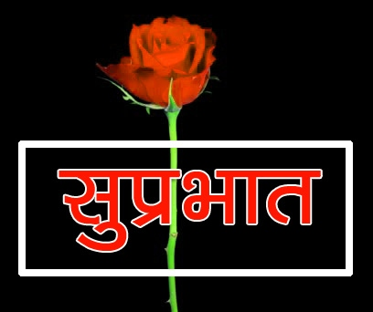 Flower Suprabhat Images 10