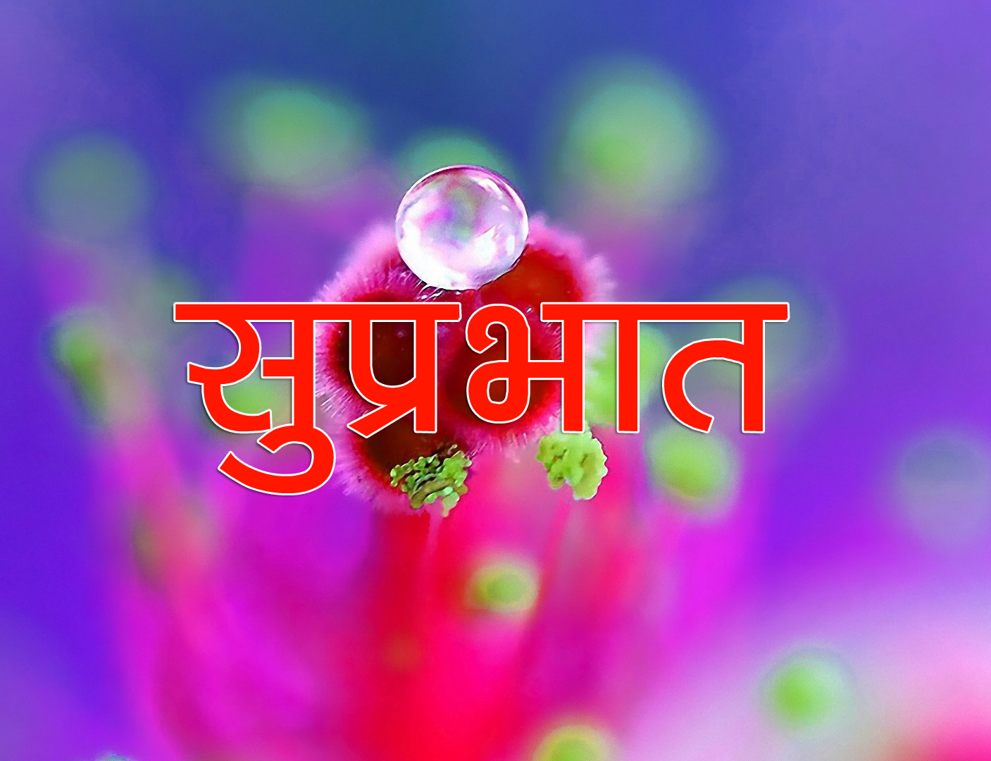 Flower Suprabhat Images 11