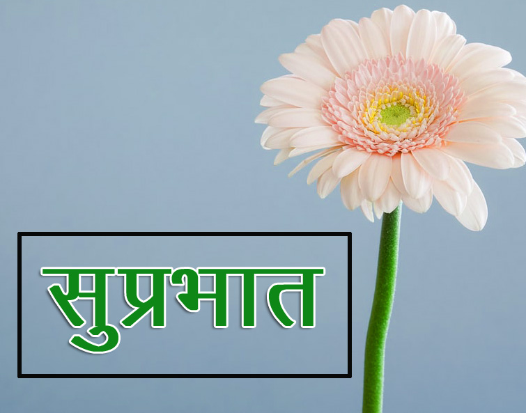Flower Suprabhat Images 16