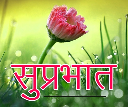 Flower Suprabhat Images 17