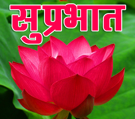 Flower Suprabhat Images 18