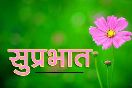 Flower Suprabhat Images 20
