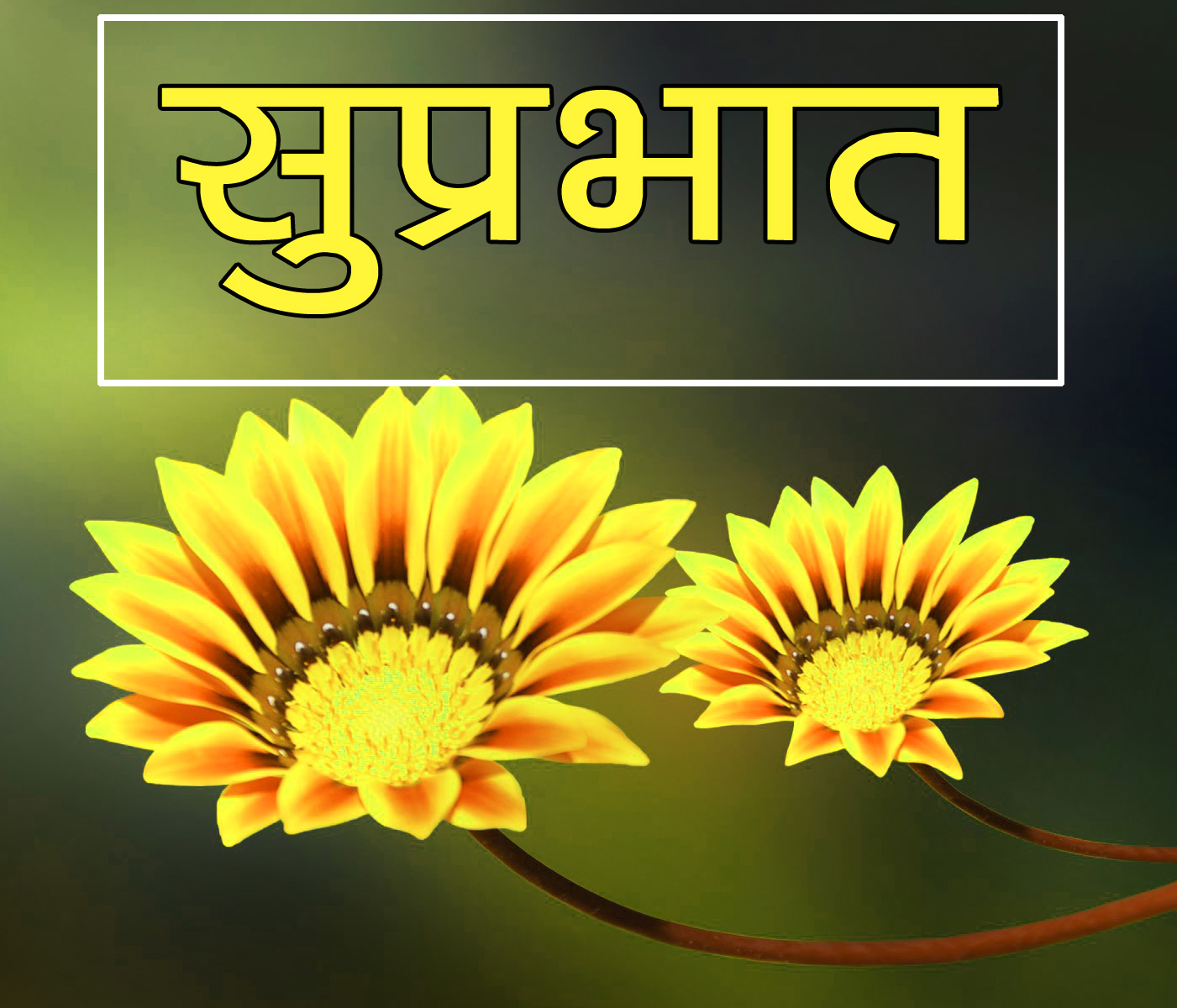 Flower Suprabhat Images 22