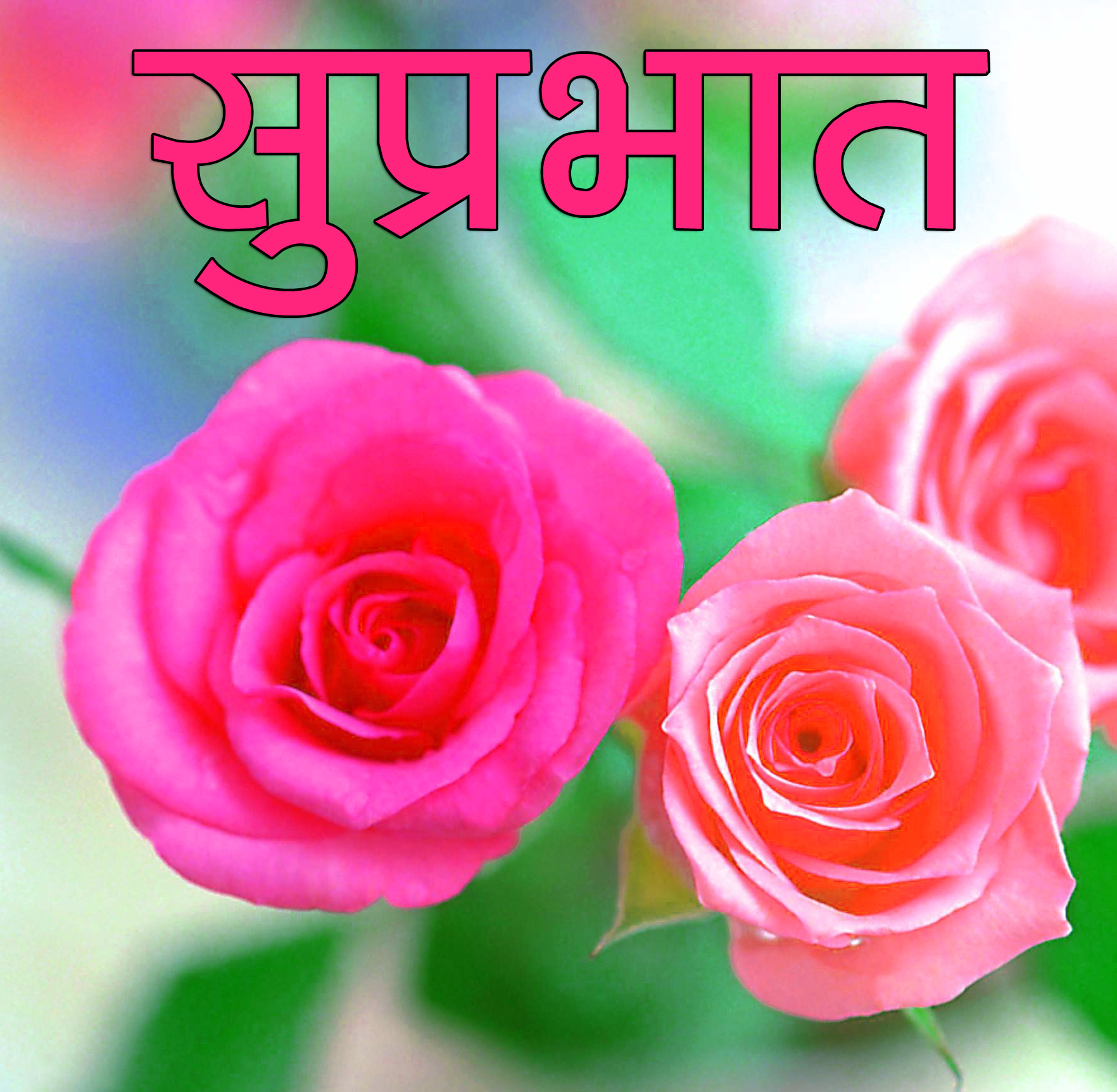 Flower Suprabhat Images 4
