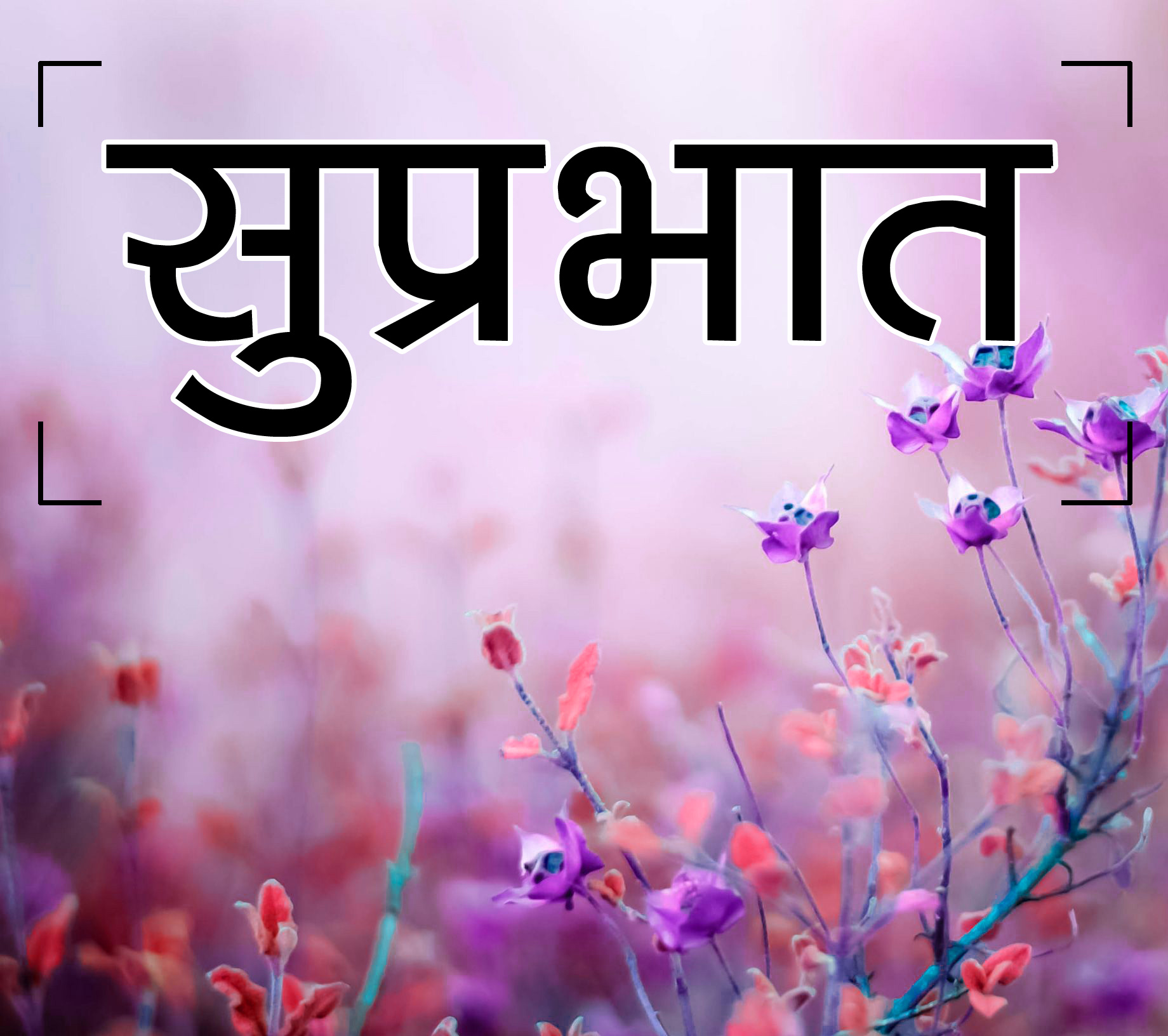 Flower Suprabhat Images 5