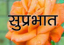 856+ Flower Suprabhat Wallpaper HD Download