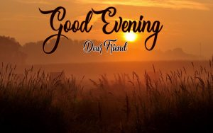 Free Good Evening Photo for Facebook 1