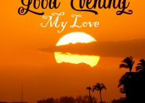 155+ New Good Evening Images HD Download