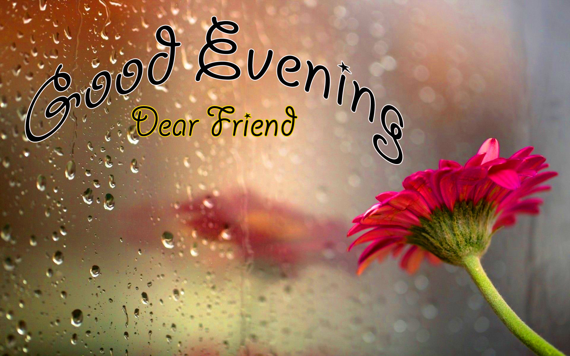 216+ Gud Evening Images Photo Pics Wallpaper Download In HD