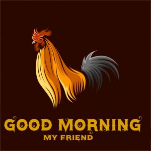 Free Good Morning Rooster Pics Images Download