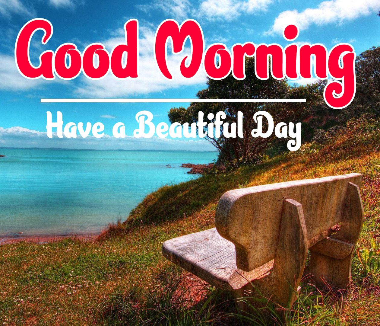 Free Nature Good Morning Wallpaper 15