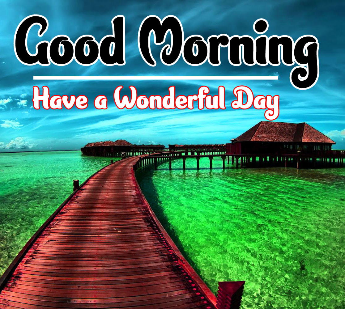 Free Nature Good Morning Wallpaper 4