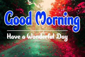 Free Nature Good Morning Wallpaper 6