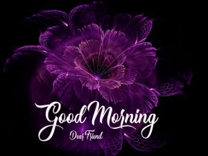 Free good morning have a nice day Wallpaper