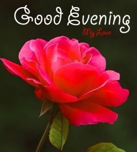 Good Evening Wallpaper Free Download