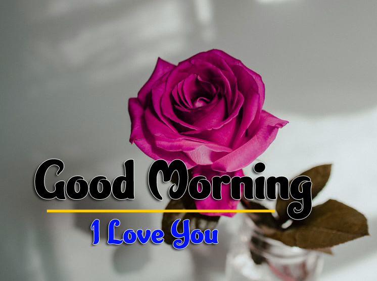 I Love You Flower good morning Images Pics Wallpaper Download