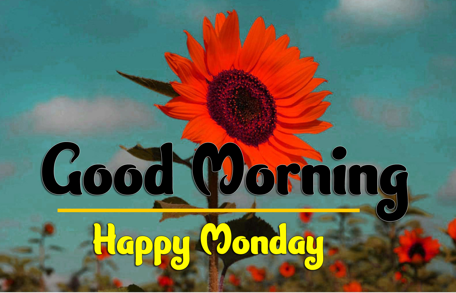 Good Morning Monday Images 1